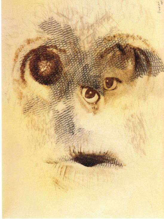 Jindrich Styrsky - Untitled, 1936. From the series Omnipresent Eye (Vsudypitomme oko). Pencil frottage on paper