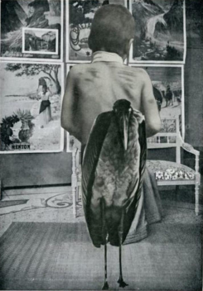 Collage d 'André Breton et Paul Eluard pour le Tombeau des secrets de René Char 1930 Via drouot