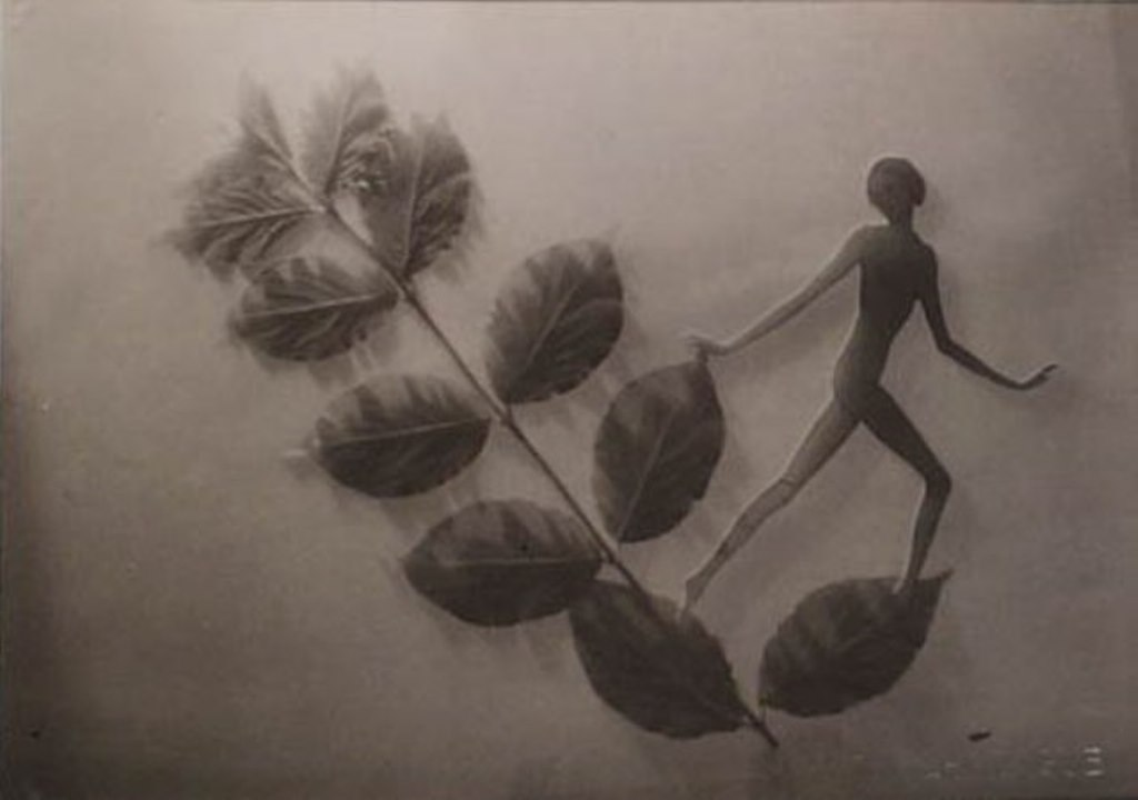 František Drtikol- Untitled (cut-out nude with leaves) c.1930-1935. Via kochgallery
