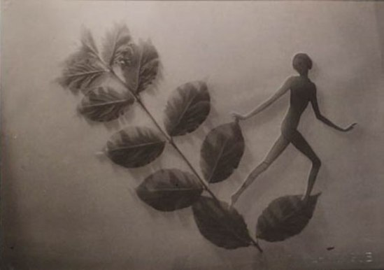 František Drtikol- Untitled (cut-out nude with leaves) c.1930-1935. Via kochgallery