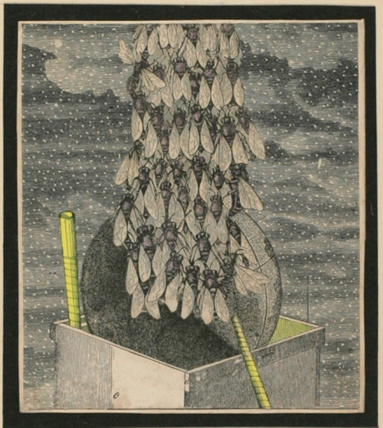 Joseph Cornell. Collage 1933 Via ubugallery