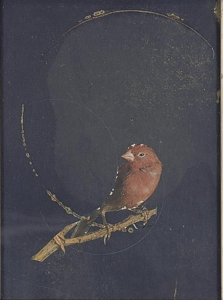 Joseph Cornell. Finite and infinite (Infinite Series) 1960 Via mutualart