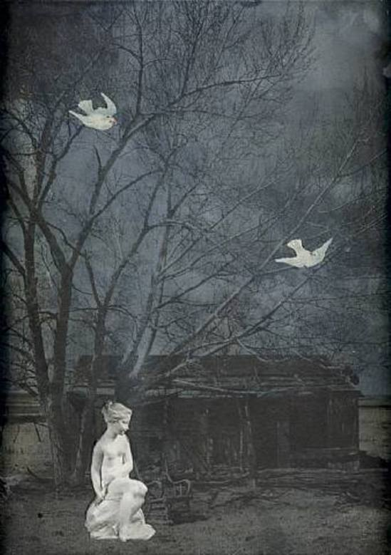 Joseph Cornell. Home, Poor Heart 1960 Via artnet