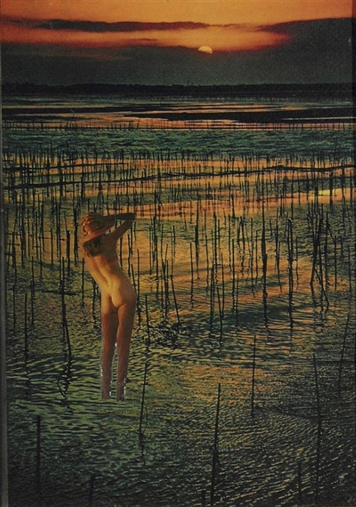 Joseph Cornell. Untitled (Nude in Marsh) 1960 Via mutualart