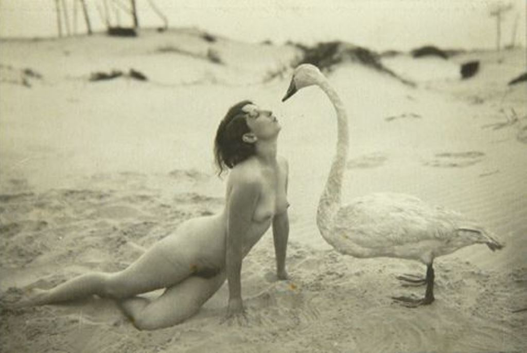 Leda and the Swan by Marcel Meys, 1920. Via pictify
