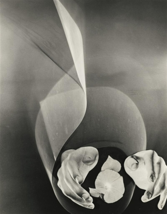 Lotte Jacobi. Photogenic. Hands with flower 1950. Via mutualart