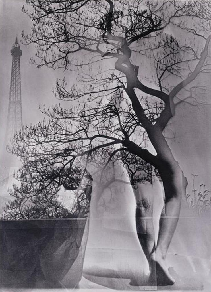 Maurice Tabard, Walking Tree, 1929. Via theredlist