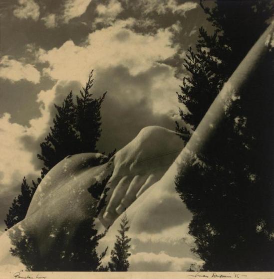 Max Dupain. Pamela's Hour 1936. Via aasd.com.au