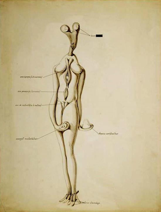 Victor Brauner. Anatomie du désir 1935 Via RMN