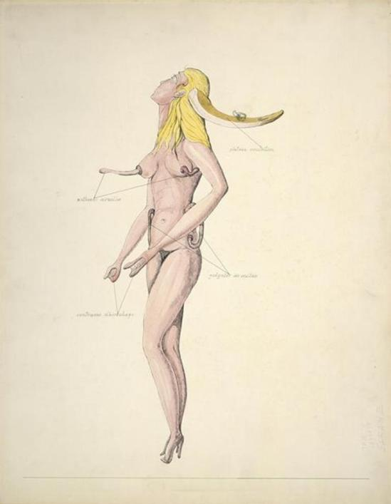 Victor Brauner. Anatomie du désir 1936 Via RMN