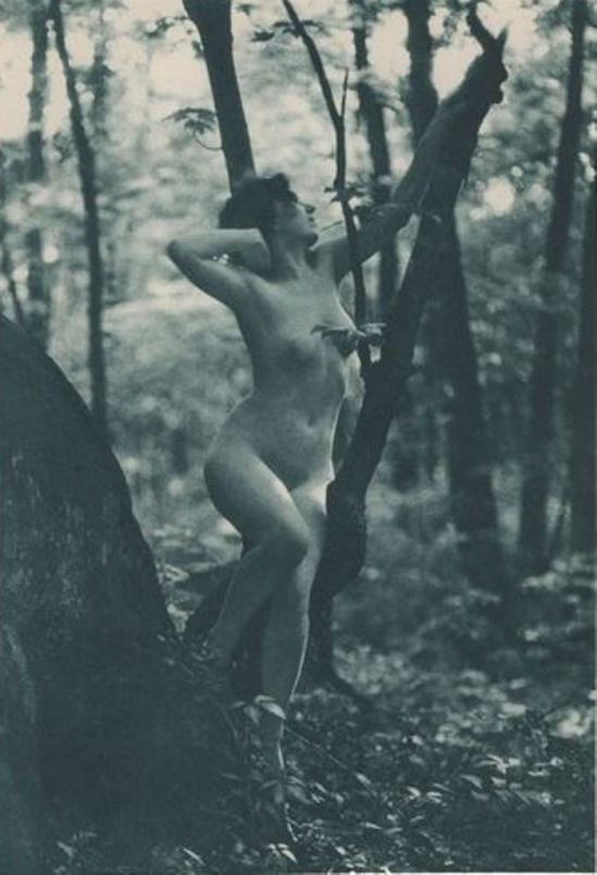 André Studio. Sunrise in the wood. Felmi Kartov 1926 Via historicalzg