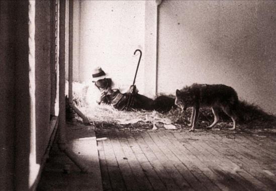 Joseph Beuys, I Like America and America Likes Me, 1974