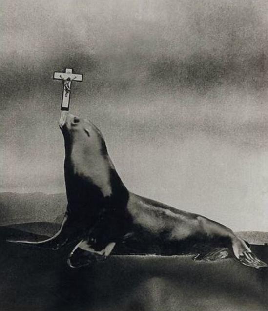 Leo Dohmen. Le ludion 1956