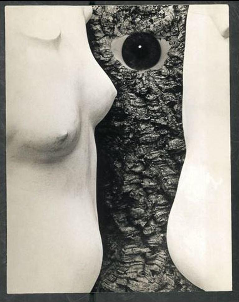 Leo Dohmen. Le voyeur