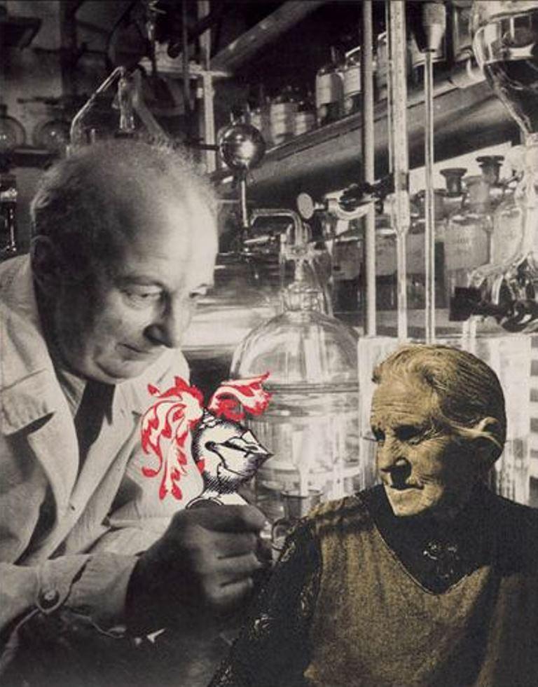 Leo Dohmen. L'expérience 1955