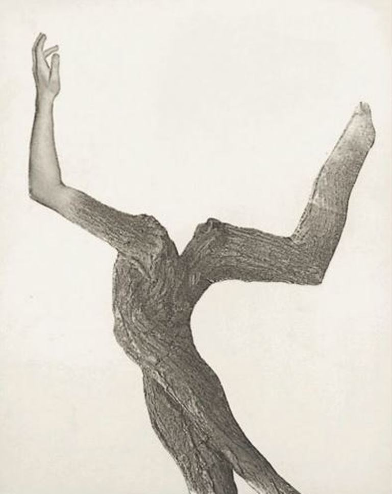 Leo Dohmen. Spring 1956