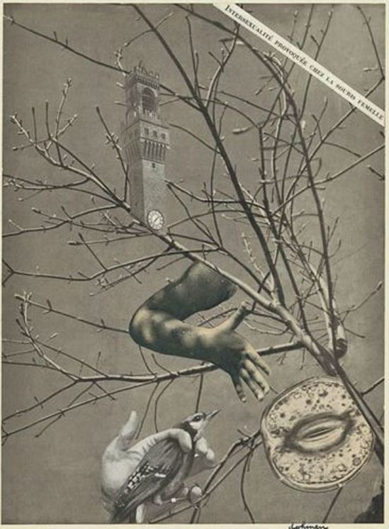 Leo Dohmen. The symbolist 1953