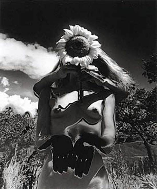 Eikō Hosoe. Sunflower song 1992 Via photography.ca