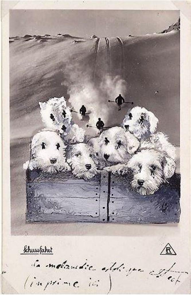 Salvador Dali. Carte postale envoyée à André Breton en 1932. La mélancolie extatique des chiens Via andrebtreton.fr