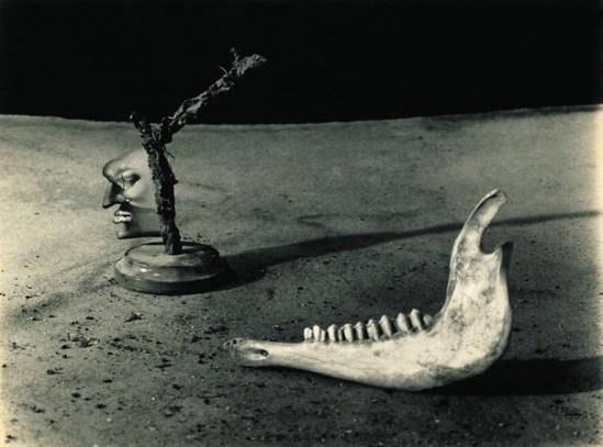 Joan Fontcuberta.  Narcisse sodomisé par une mâchoire repentante 1959 Via slashparis.com.jpg