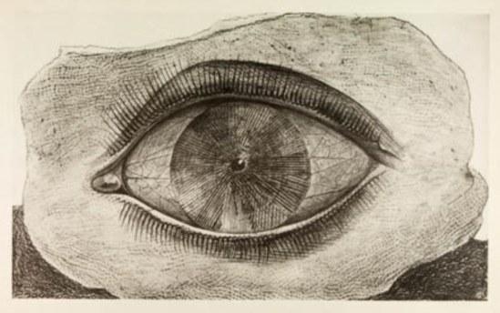 Max Ernst. L'évadé 1926