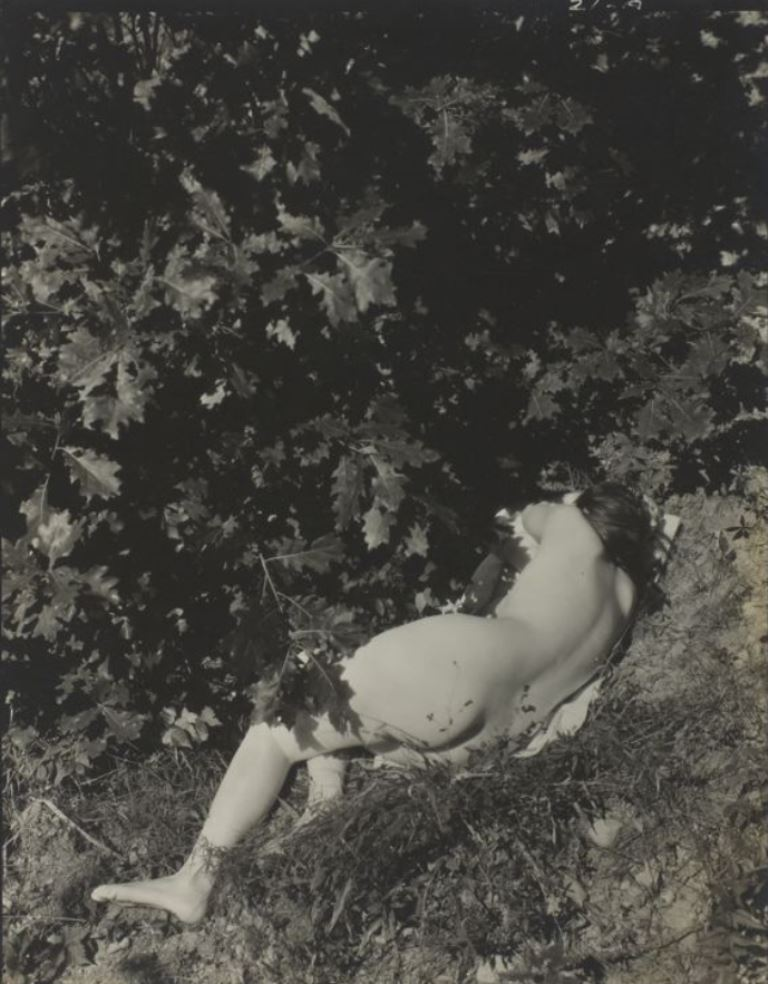 Edward Steichen. Untitled (Kate Steichen) 1935 Via artic.edu