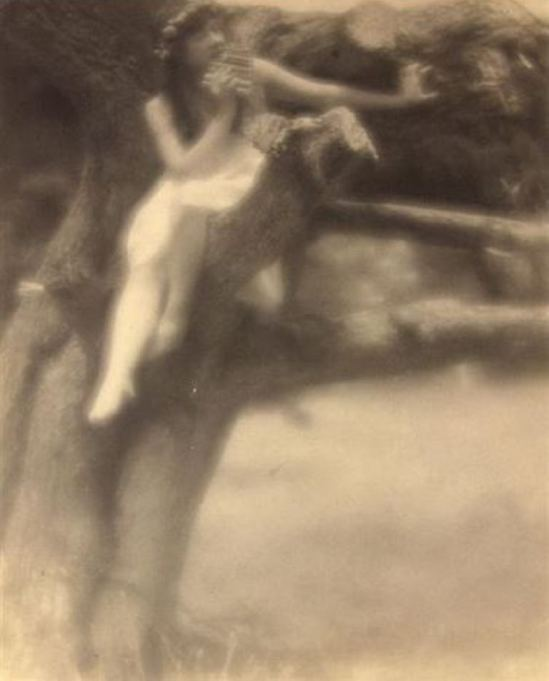 Arthur F. Kales. Nymph in tree 1900-1909. Via artnet
