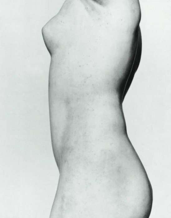 André Vigneau. Torse grec, musée du Louvre 1958. Via musée réattu