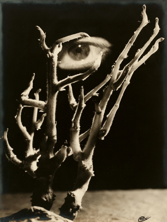 Artiste Inconnu. Surreal eye amid branches 1930s. Via thesip.org
