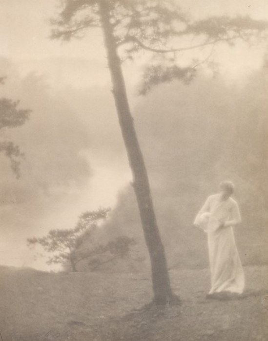 Clarence Hudson White. Morning 1905. Via metmuseum