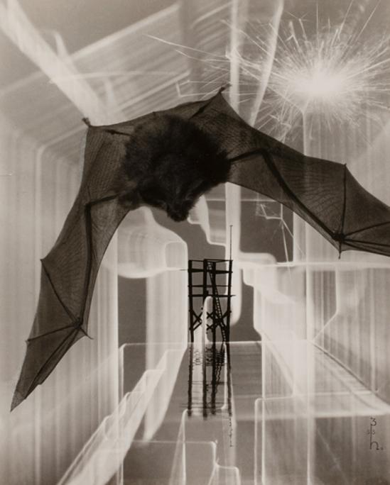 Heinz Hajek-Halke. Montage 1953. Via thesip.org