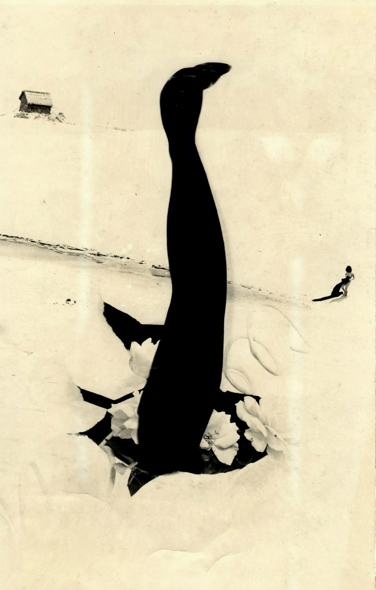 Kansuke Yamamoto. Endress beginning 1963©Toshio Yamamoto