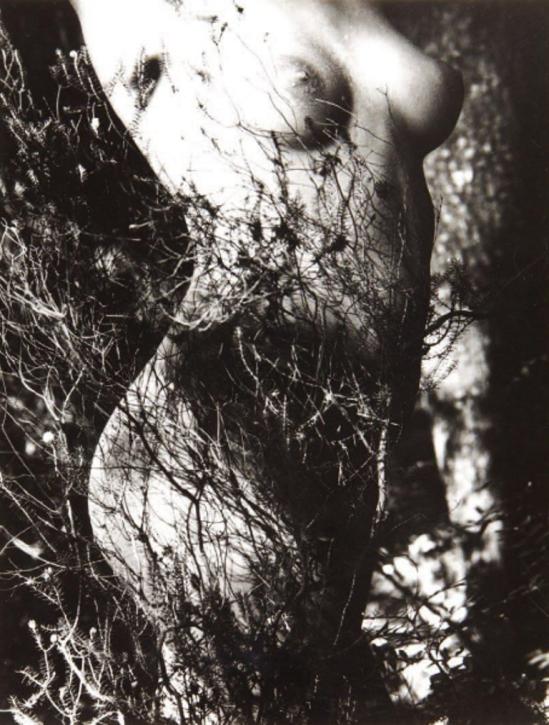 Lucien Clergue. Genèse 1934. Via yannlemouel