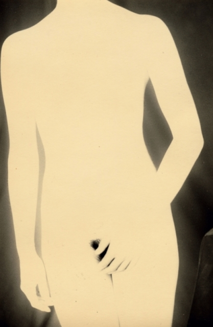 Masao Yamamoto. Untitled (installation), 2005