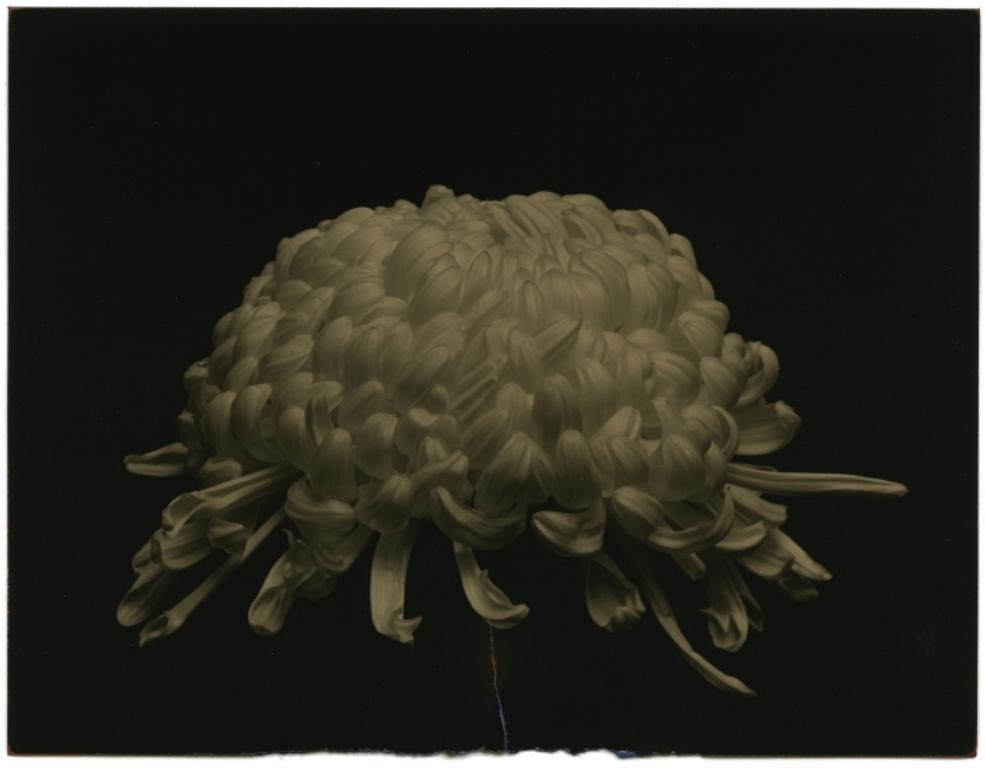 Masao Yamamoto1. From a box of ku. Via yamatomasao