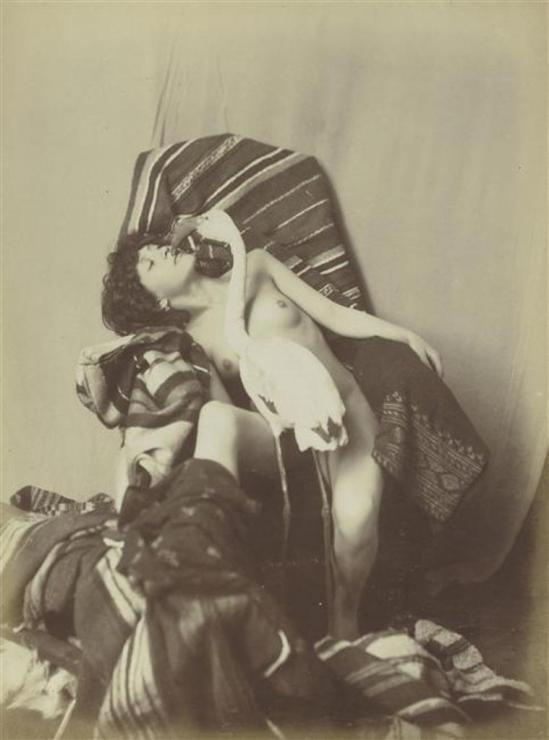 Photographe anonyme. Jeune fille nue assise, et un flamand rose vers 1870. Via rmn