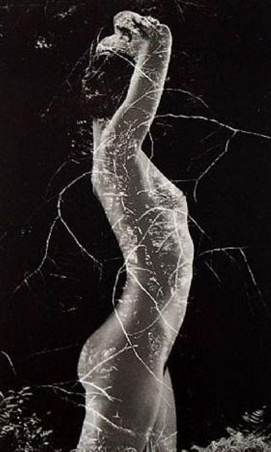 Ruth Bernhard. Symbiosis. Via artnet