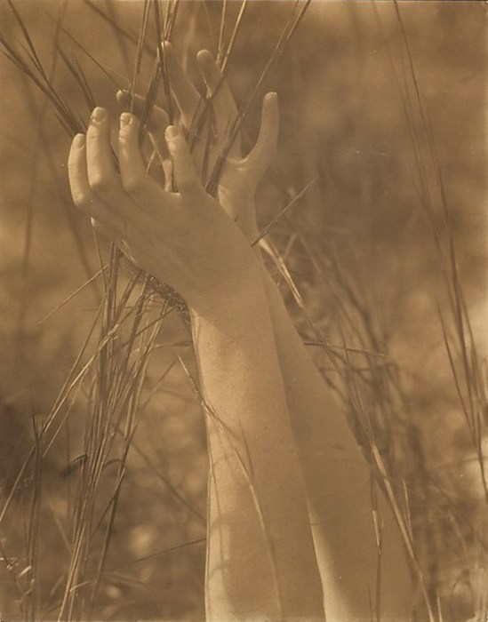Edward Steichen.  Dana's hands and grasses. Long Island, New-York 1923. Via metmuseum