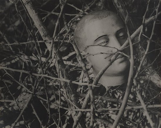 Lionel Wendt. Untitled (Buddha head among branches) 1939. Via nga.gov