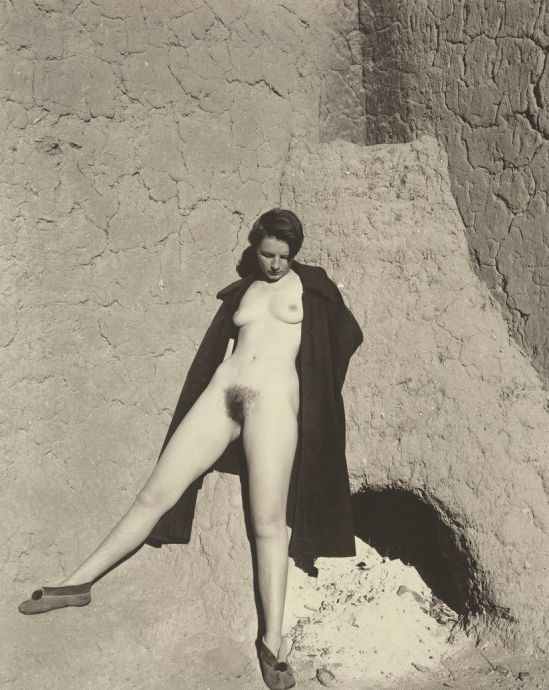 Edward Weston. Plate 60, nude 1937. Via ebay