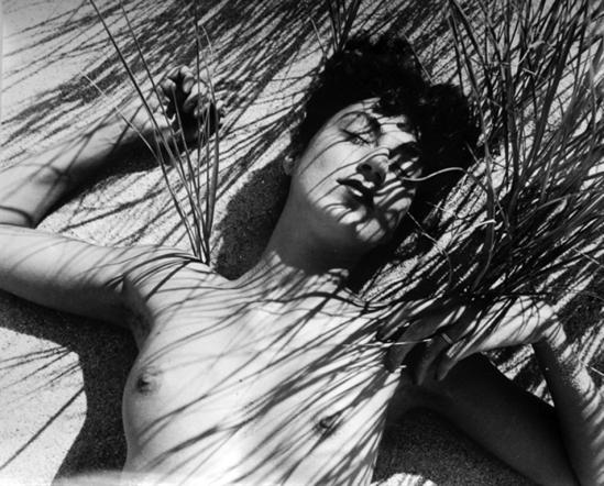 Herbert Matter. Nude in reeds 1940. Via artnet