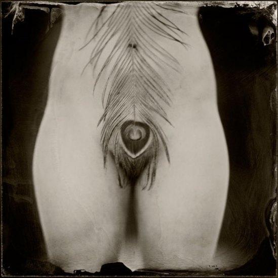 Ken Merfeld. Série Erotic. Via utoopics
