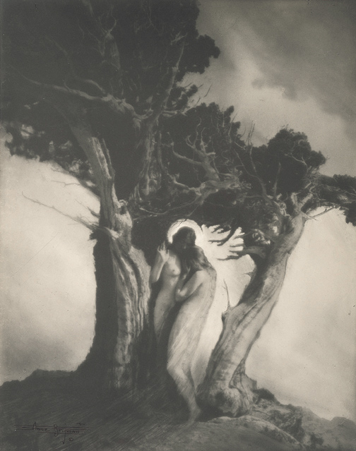 Anne Brigman. The Heart of the Storm 1902. Via geh