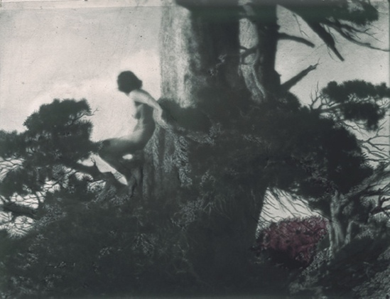 Anne Brigman. The Pine Sprite 1911. Via geh