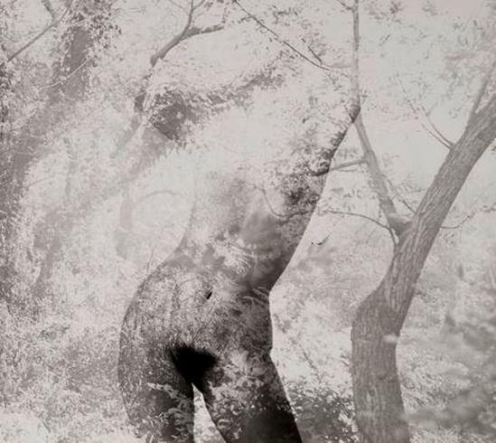 Robert Heinecken. Figure in trees 1971. Via ccpemuseum