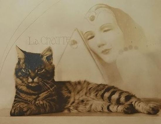 William Mortensen. La chatte 1935. Via artnet
