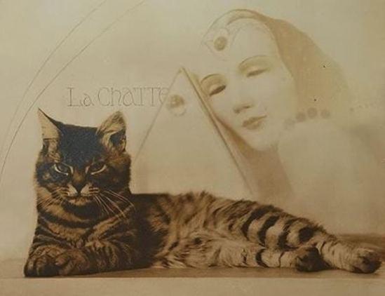 William Mortensen. La chatte 1935. Via artnet