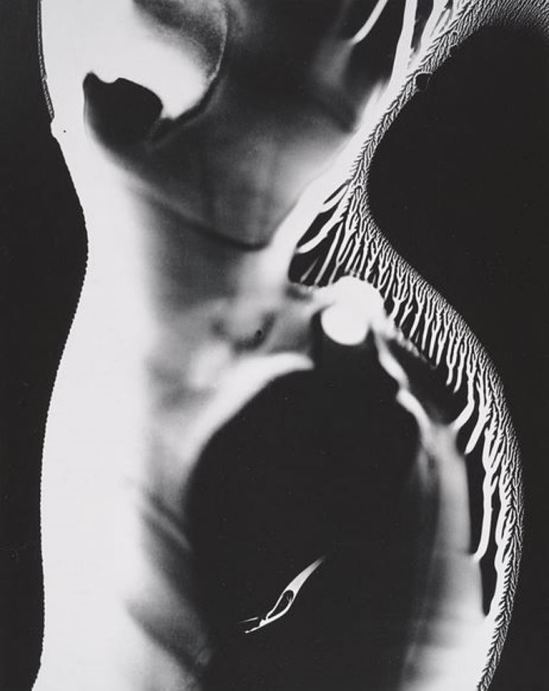 Wynn Bullock. Nude photogram 1970.Via ccpemuseum