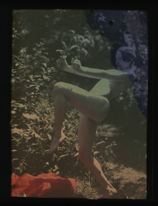 Ernest-Louis Lessieux. Tatiana posant nue de profil dans un jardn (titre factice) après 1907. Autochrome. © Alienor.org