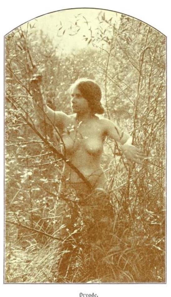 From the book Weibliche Schönheit. Kritische Betrachtungen über die Darstellung des Nackten in Malerei und Photographie2. Dr. B